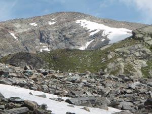 Via Normale Mont Glacier