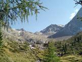 Via Normale Pizzo delle Vedrette (Fernerkopfl) - La Valfredda