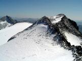 Via Normale Pizzo delle Vedrette (Fernerkopfl) - Vista sul Monte Nevoso