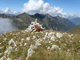 Via Normale Pizzo di Valbona - Vista dalla cima verso cime delle Orobie Valtellinesi