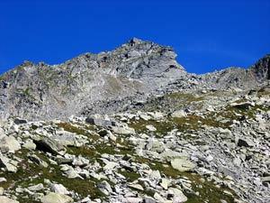 Via Normale Wandfluhhorn (Pizzo Biela)