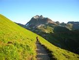 Via Normale Piz Kesch - Il versante S del Piz Kesch, a metà strada fra l´Albulapass e la capanna d´Es-cha