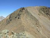 Via Normale Piz Surlej - La cresta SSE dalla sella di (q. 2984 m)