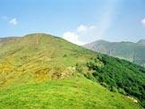 Via Normale Monte Garzirola - da SE - In salita sopra Casella