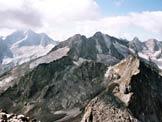 Via Normale Monte del Forno - Panorama di vetta verso il Disgrazia e il bacino del Forno