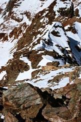 Via Normale Monte Braccia - Il canaletto, il ripido pendio innevato e la cresta SW, dalla vetta