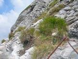 Via Normale Monte Sumbra - La via ferrata del Sumbra, sale il ripidissimo canalino Sud