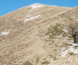 Via Normale Monte Loccia di Peve o Paver
