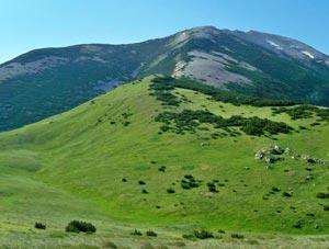 Via Normale Monte Rapina