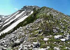 Via Normale Monte Pescofalcone / Pesco Falcone
