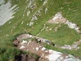Via Normale Monte Cadelle - In discesa sul sentiero del versante SSW
