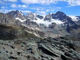 Via Normale Sasso Nero - Il Gruppo del Bernina dalla vetta (q. 2921 m)