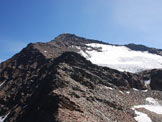 Via Normale Pizzo Tresero - Cresta W - La Cresta Ovest dalla Punta del Segnale.