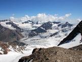 Via Normale Pizzo Tresero - Cresta W - Il Ghiacciaio dei Forni dalla cima.