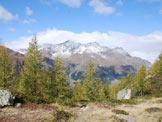 Via Normale Monte Storile - Via Normale da W - Sul terrazzo all´uscita del bosco.