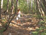 Via Normale Monte Cocusso - Kokoš - Salendo verso il Cocusso