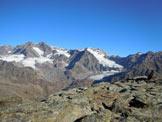 Via Normale Monte Spondascia - I Ghiacciai di Fellaria W ed E, dalla vetta