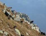 Via Normale Pizzo Guardiello - La Val Bregaglia dalla vetta del Guardiello
