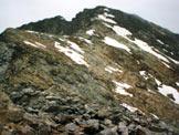 Via Normale Cima Orientale dei Forni - Sulla cresta SSE, a sinistra la vetta