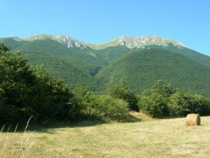 Via Normale Monte di Cambio (da N)