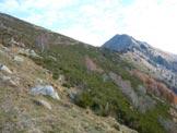 Via Normale Monte Bassetta - In salita sul versante S, a destra il M. Brusada