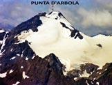 Via Normale Punta d´Arbola - dal Vannino - La Punta d'Àrbola in un'immagine ravvicinata dal M. Basòdino