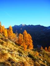 Via Normale Cima Careser cresta est - Baito Campisol