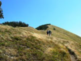 Via Normale Monte Alfeo - La rampa finale