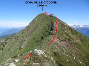Via Normale Cima delle Cicogne - Cresta SE