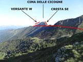 Via Normale Cima delle Cicogne - Cresta SE - La Cima delle Cicogne dai pressi del Passo S. Jorio