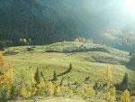 Via Normale Monte Tuglia - La malga vista dal pendio erboso
