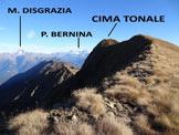 Via Normale Cima Tonale - La vetta