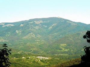 Via Normale Monte Gottero