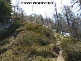 Via Normale Pizzo Pidocchio e Monte Vespolo - In salita, nel bosco
