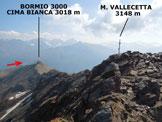Via Normale Monte Vallecetta - Al ritorno dalla vetta
