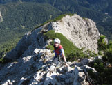 Via Normale Monte Miaron - Sulla cresta finale