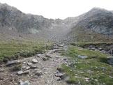 Via Normale Punta Cervinia / Hirtzer Spitze - Alpe di Talle da sopra