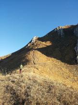 Via Normale Monte Due Mani - da Ballabio - Dossone erboso che conduce alla cresta
