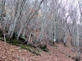 Via Normale Monte Penna - il sentiero di salita