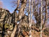 Via Normale Monte Penna - ruderi lungo la discesa
