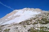 Via Normale Corno Grande - Vetta Occidentale - La cresta W dalla Conca degli Invalidi