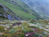 Via Normale Pizzo d'Orta - I ripidi pendii erbosi del versante S del Pizzo d'Orta