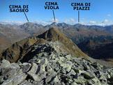 Via Normale Pizzo Trevesina (o Piz Trevisina) - Panorama di vetta, verso NE