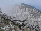 Via Normale Becco di Filadonna (traversata) - Un tratto lungo la cresta