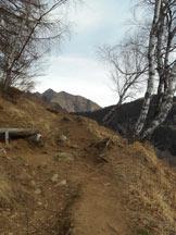 Via Normale Pian Cavallone - il sentiero che conduce alla bocchetta alla (q. 1400 m circa)
