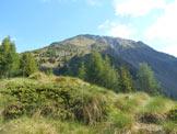 Via Normale Monte Masuccio (cresta SW) - I ripidi pendii erbosi da risalire per raggiungere l´inizio della cresta SW