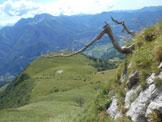 Via Normale Pizzo della Pieve (cresta E) - I rami secchi posti alla base della cresta E