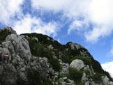 Via Normale Mogenza Piccola - Verso la cima