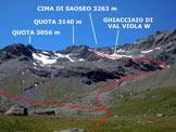 Via Normale Cima di Saoseo - Cresta Est - La variante di discesa dal ghiacciaio (versante NE)