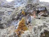 Via Normale Monte Spiz - La colonna di muschio